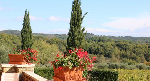 Abruzzo: vini e vitigni